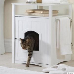 toaleta-pisici