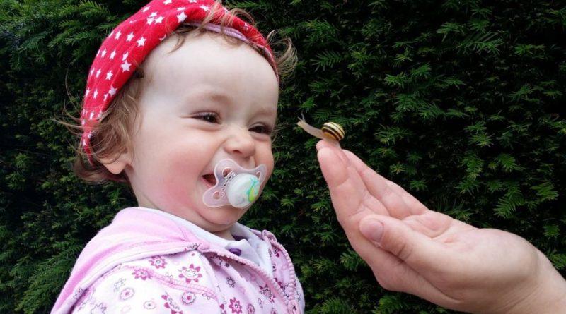Suzeta la bebelusi