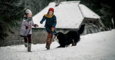 Incepe Festivalul International De Film Pentru Tineri – Programul Kinodiseea
